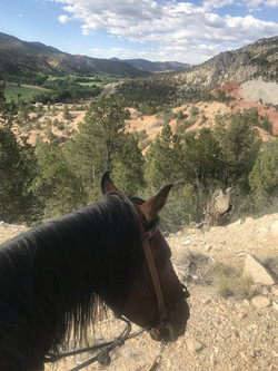 east-zion-resort-horse (2)