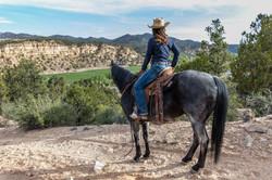 On-The-Horse-Overlook-2