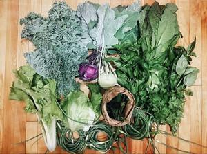 Food storage tips for Spring
