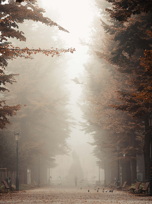 Venetian Fog