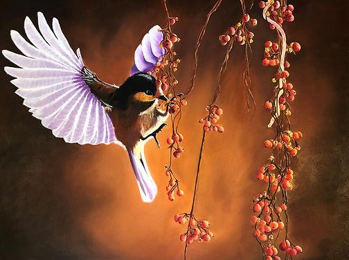 Lloyd's Hummingbird.jpg