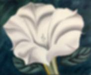 Georgia's White Flower.jpg