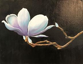 small magnolia1.jpg