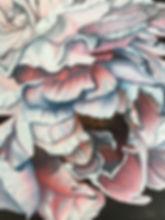 Pink and Gray Peony.jpg