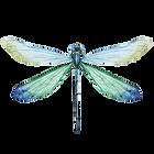 modrá Dragonfly