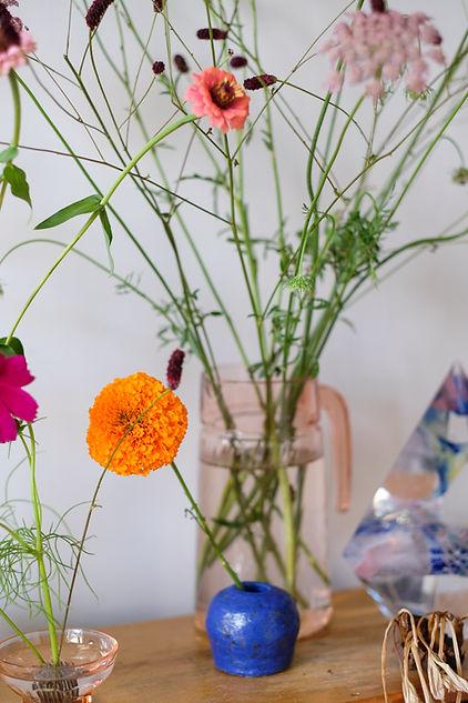 Kore_FlowerplantsDEF_67.JPG