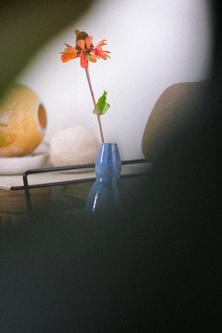 Kore biologische bloemen