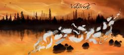 "Pochette album ""Envol"" de Volivent"