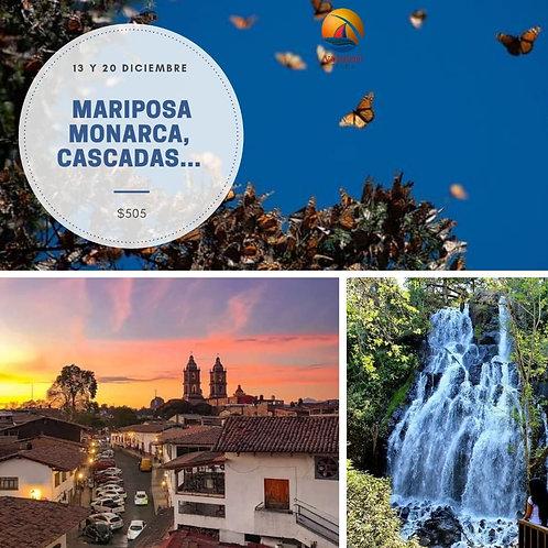 (PUE-DIC) TOUR MARIPOSA MONARCA
