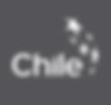 Logo_MarcaChile_Caja Gris copia.png