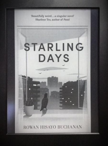 Starling Days by Rowan Buchanan, Book Cover