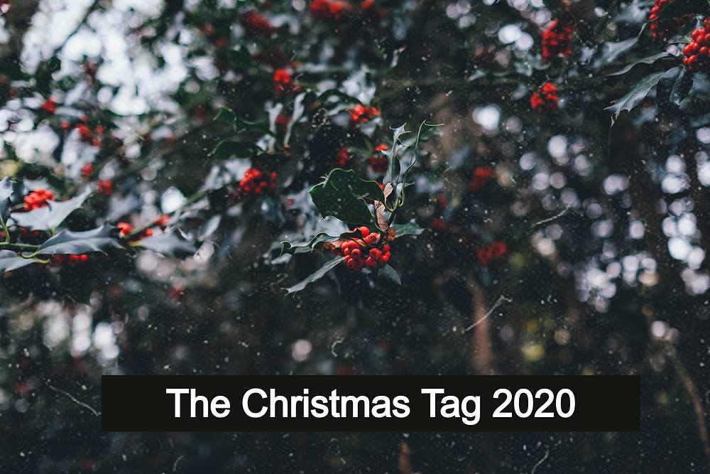 The Christmas Tag 2020, Image from Unsplash