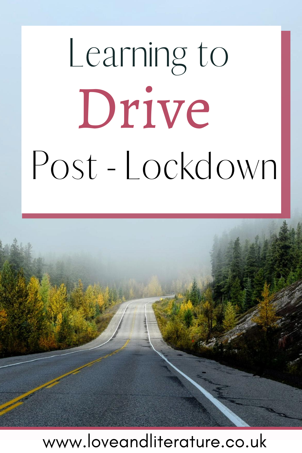Learning To Drive Post-Lockdown Pin