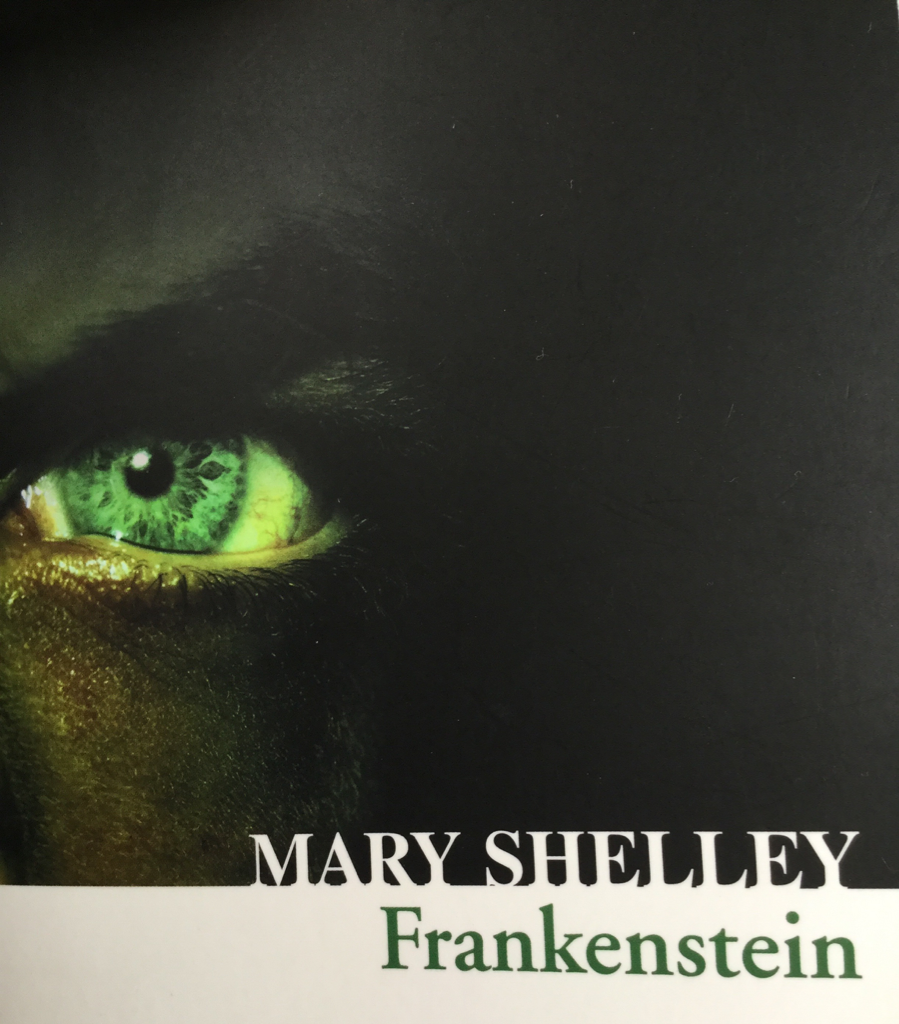 Picture of 'Frankenstein' cover