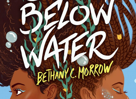 'A Song Below Water' Book Review