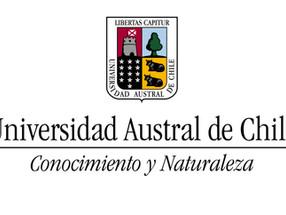 Chino mandarín: Universidad Austral de Chile