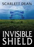 Invisible Shield Image.jpg