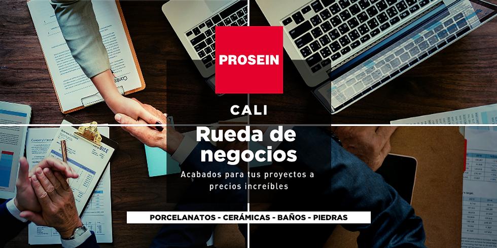 Cali - Rueda de negocios Prosein
