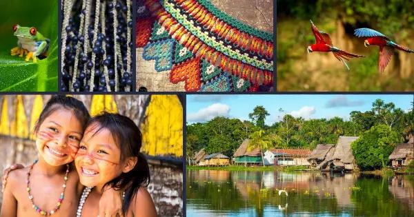 Mosaico región Amazónica