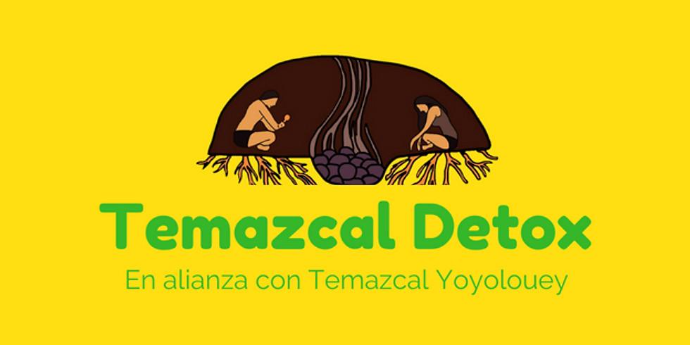 Temazcal Detox en alianza con Temazcal YoyoloUey