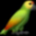 parrot_1f99c editado.png
