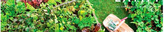 Refugio El Hato es espacio para lo orgánico.jpg