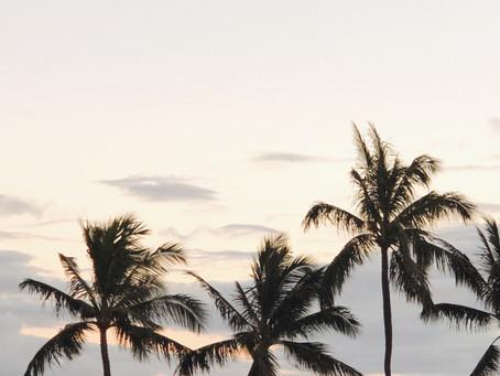 【 アメリカ移住】ハワイの公立高校ってどんなところ?