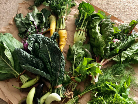 3 Sustainable Tips to Reduce Plastic When Buying Groceries