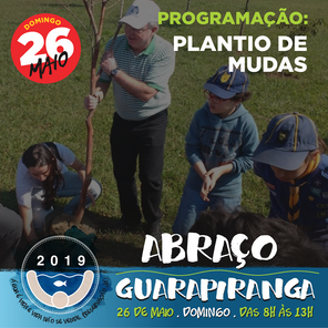 abraco_2019_banners_0006_dados_3.png