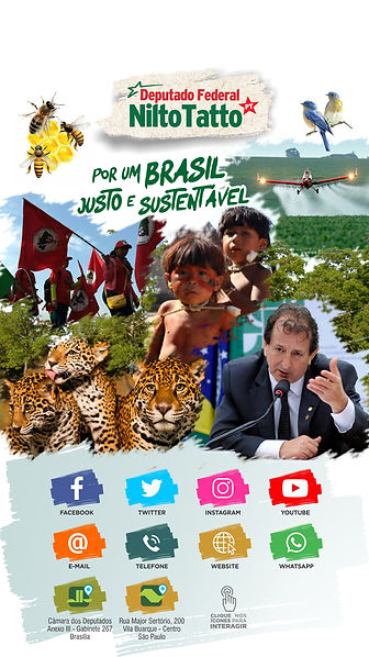 8_deputado_federal_nilto_tatto_contato.j