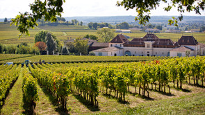 Bordeaux En-Primeur Wines