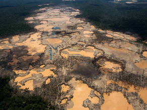 Dirty gold : cost of illegal gold mining in amazon