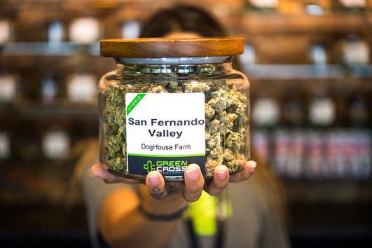 Green Cross Cannabis Salem Dispensary