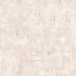 2126-4.jpg