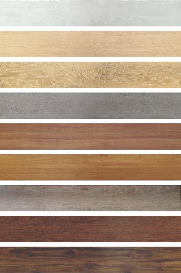 Spc colors.jpg