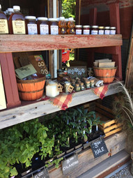 Jam, honey and local maple syrup, plus plant starts for sale at the beginning of the season.