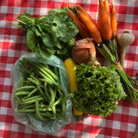 Typical CSA for mid-season