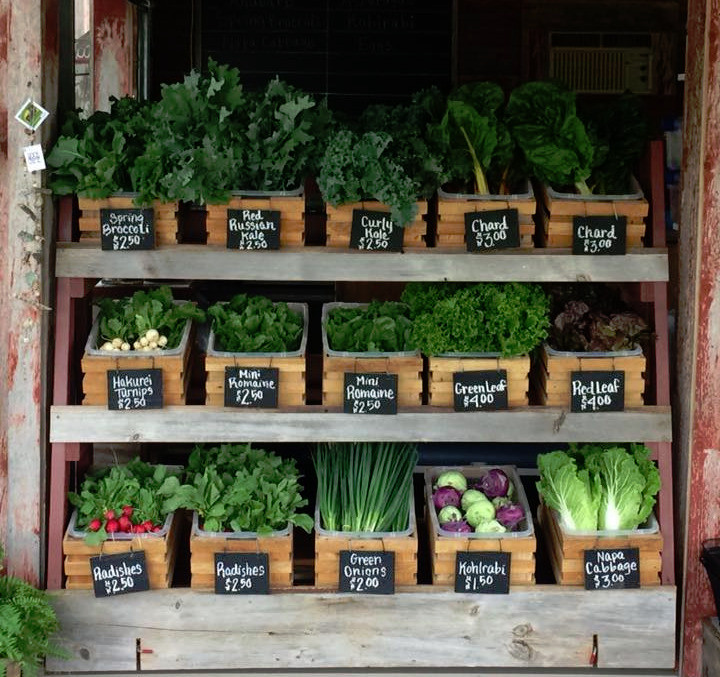 Opening day presents many fresh greens