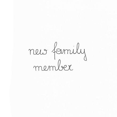 Baby New Family Member