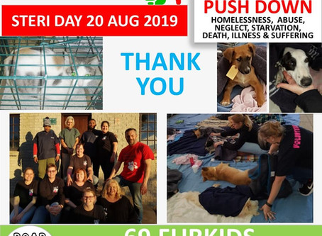 Steri Day 20 August 2019