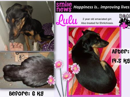 Smile News: Lulu