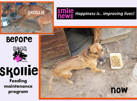 Smile News: Skollie