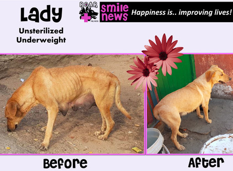 Smile News: Lady