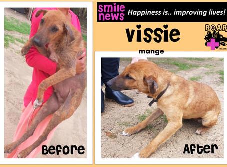 Smile News: Vissie