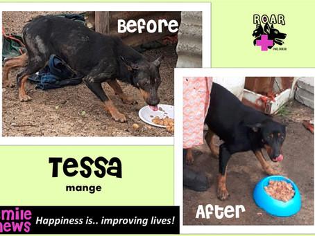 Smile News: Tessa