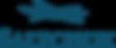 Saltchuk_Logo_Blue.png