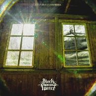 black swamp water_distant thunder artwor