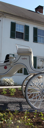 carriage in front of the building .jpg