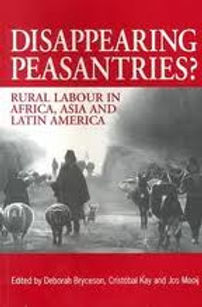 disappearing peasantries book cover