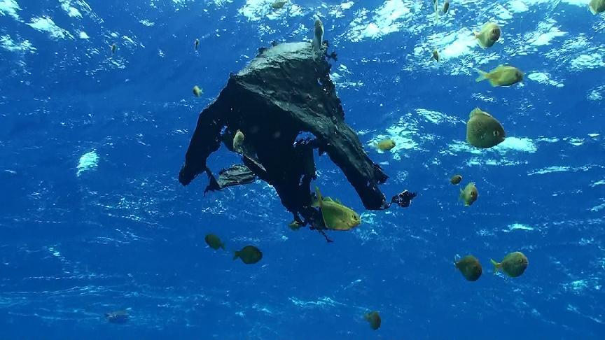 plastic_bags_in_ocean_surfers_for_clean_seas_ocean-_girl_project.jpg